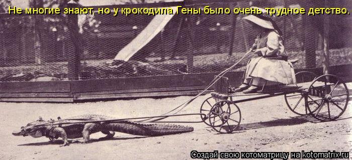 Не многие знают, но у крокодила Гены было очень трудное детство.