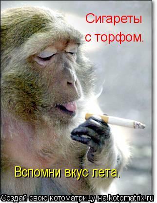 Котоматрица: Сигареты с торфом. Вспомни вкус лета.