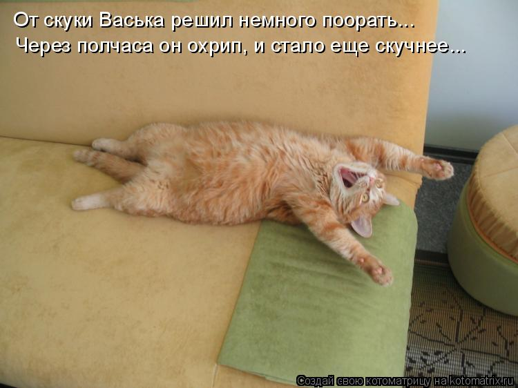 От скуки Васька решил немного поорать... Через полчаса он охрип, и ста