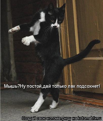 Котоматрица - Мышь?Ну постой,дай только лак подсохнет!