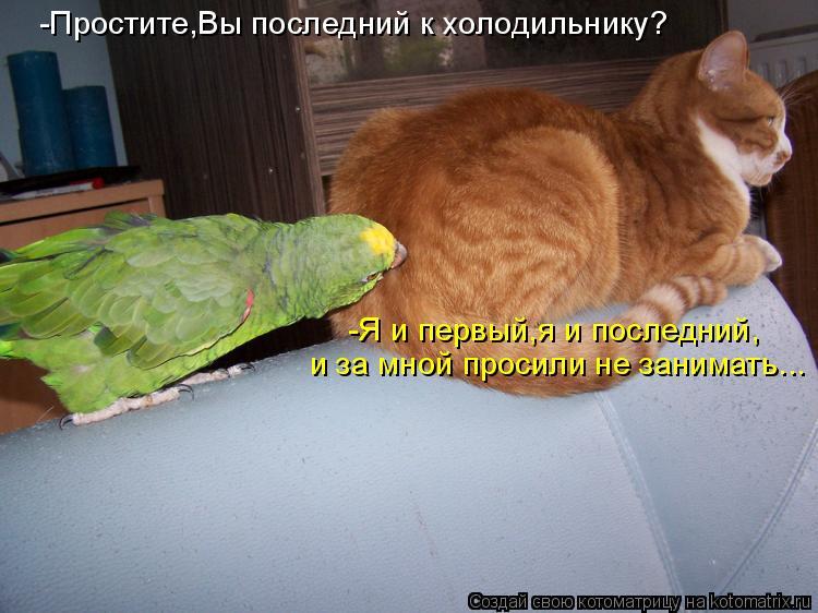 Котоматрица: -Простите,Вы последний к холодильнику? -Я и первый,я и последний, и за мной просили не занимать...