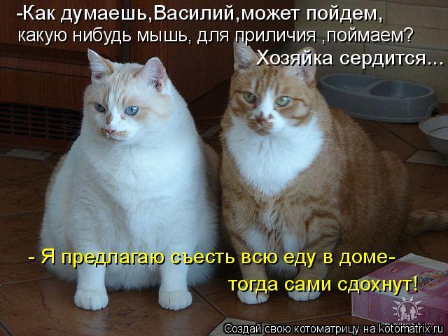 -Как думаешь,Василий,может пойдем, какую нибудь мышь, для приличия ,по