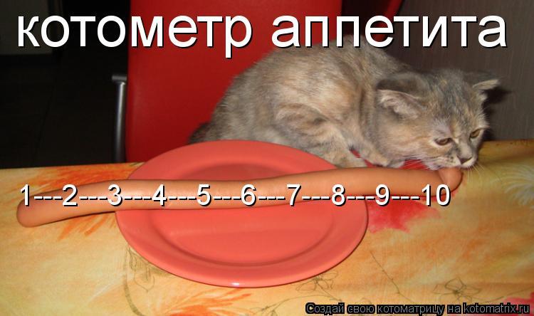 Котоматрица: 1---2---3---4---5---6---7---8---9---10 котометр аппетита