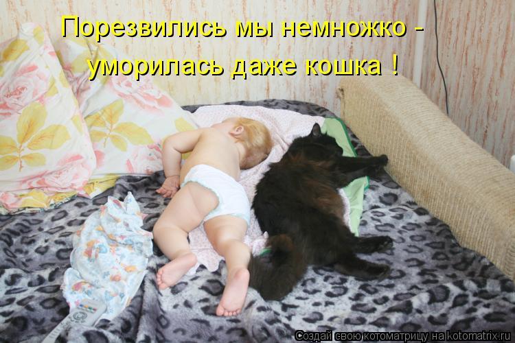 Порезвились мы немножко - уморилась даже кошка !