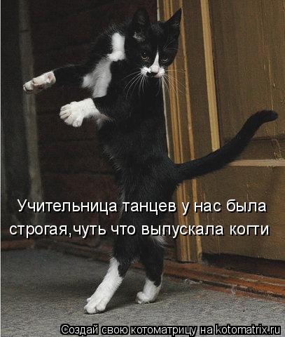 Котоматрица: Учительница танцев у нас была строгая,чуть что выпускала когти