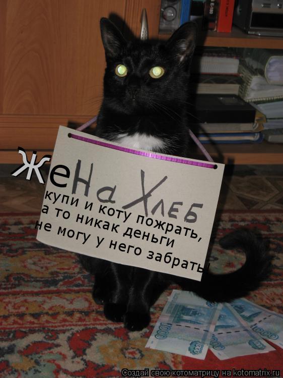 Котоматрица: Же купи и коту пожрать, а то никак деньги не могу у него забрать! Ж