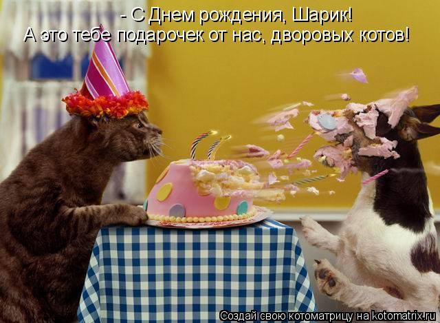 Смешные поздравления с днём рождения фото картинки 30