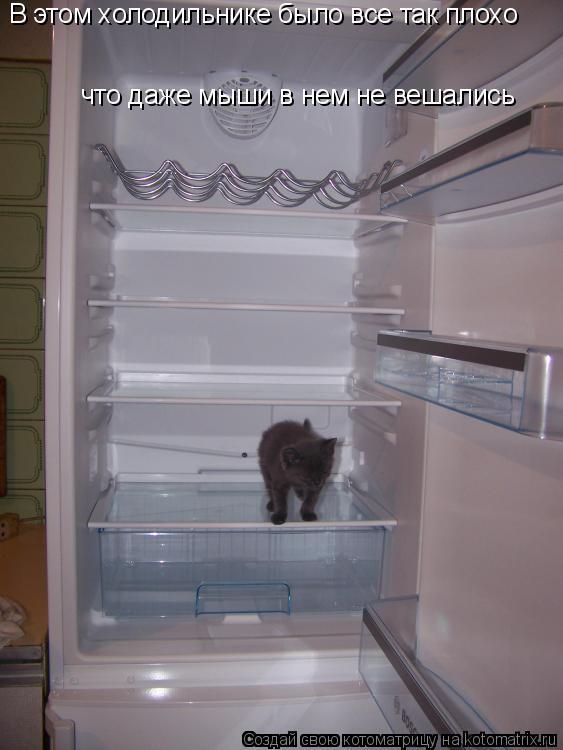Котоматрица: В этом холодильнике было все так плохо что даже мыши в нем не вешались
