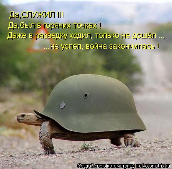 Котоматрица: Да,СЛУЖИЛ !!! Да,был в горячих точках ! Даже в разведку ходил, только не дошёл ... ...не успел, война закончилась !
