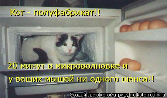 Котоматрица: Кот - полуфабрикат!!  20 минут в микроволновке и   у ваших мышей ни одного шанса!!