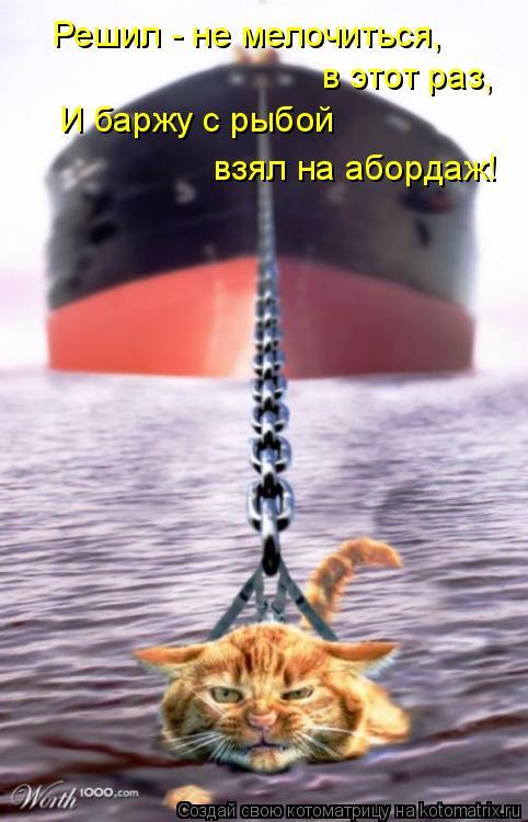 Котоматрица: Решил - не мелочиться,  в этот раз, И баржу с рыбой  взял на абордаж!