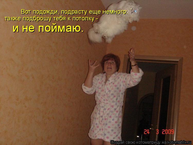Котоматрица: Вот подожди, подрасту еще немного: также подброшу тебя к потолку -  и не поймаю.