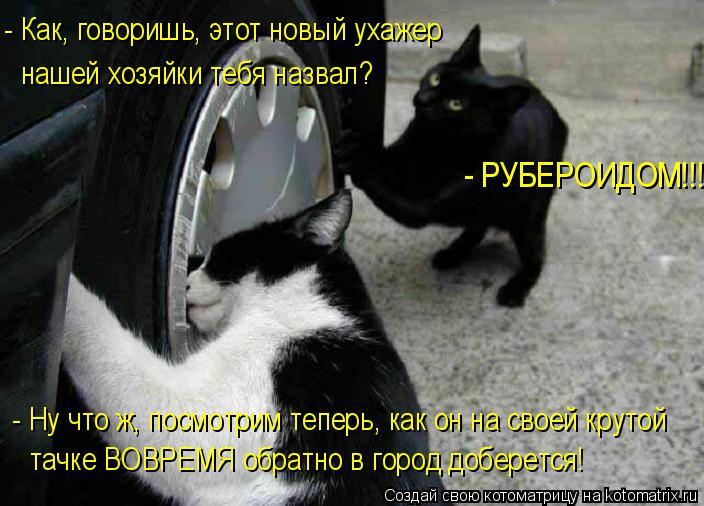 - Как, говоришь, этот новый ухажер нашей хозяйки тебя назвал? - Ну что