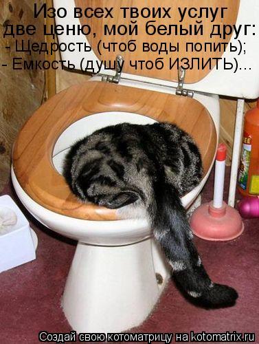 Котоматрица: Изо всех твоих услуг две ценю, мой белый друг: - Щедрость (чтоб воды попить); - Емкость (душу чтоб ИЗЛИТЬ)...