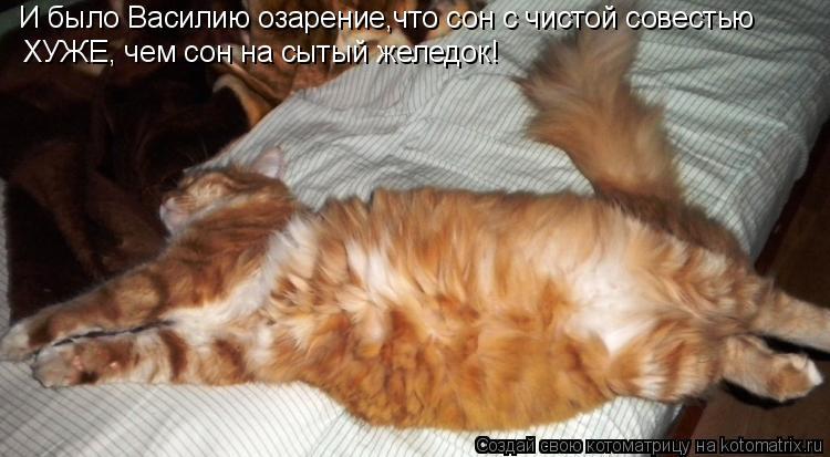 И было Василию озарение,что сон с чистой совестью  ХУЖЕ, чем сон на сы