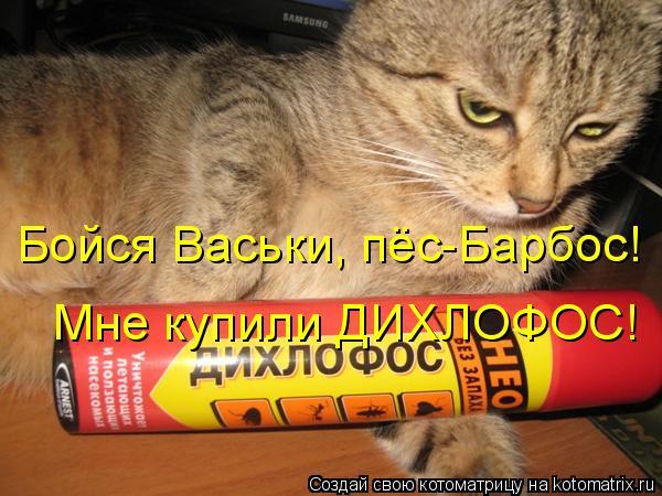 Котоматрица: Бойся Васьки, пёс-Барбос! Мне купили ДИХЛОФОС!