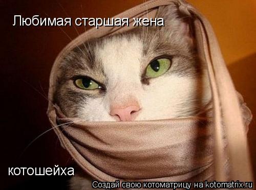 Котоматрица: Любимая старшая жена  котошейха