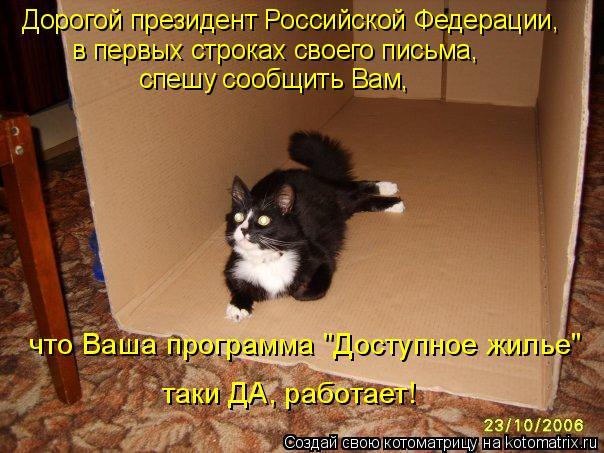 Дорогой президент Российской Федерации,  в первых строках своего письм