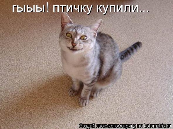 http://kotomatrix.ru/images/lolz/2010/09/15/679141.jpg