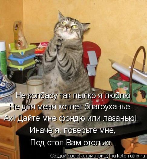Котоматрица: Не колбасу так пылко я люблю, Не для меня котлет благоуханье... Ах! Дайте мне фондю или лазанью!.. Иначе я, поверьте мне, Под стол Вам отолью...