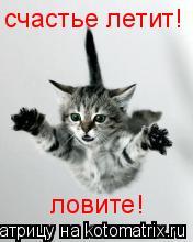 Котоматрица: счастье летит! ловите!
