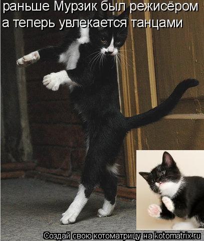 Котоматрица: раньше Мурзик был режисёром а теперь увлекается танцами