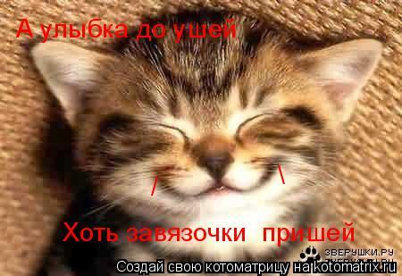 Котоматрица: А улыбка до ушей Хоть завязочки  пришей  /