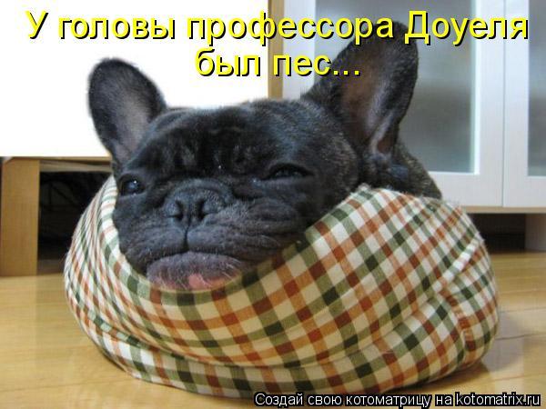 У головы профессора Доуеля был пес...