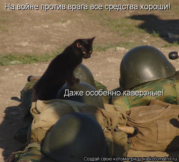 Котоматрица: На войне против врага все средства хороши!  Даже особенно каверзные!