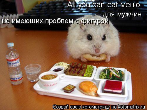 Котоматрица: All you can eat меню  для мужчин  не имеющих проблем с фигурой