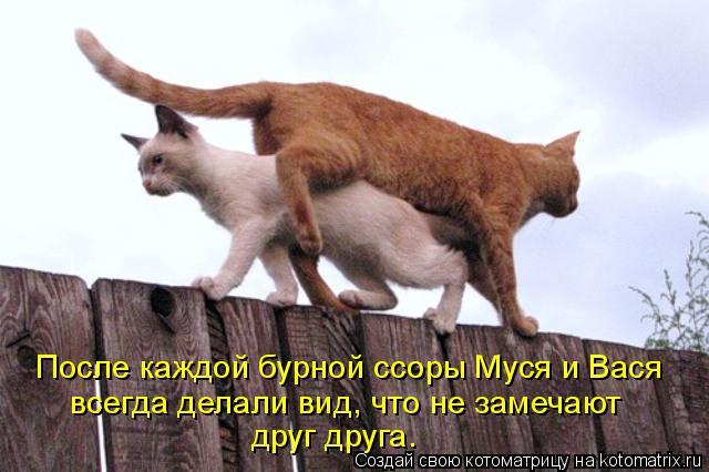 После каждой бурной ссоры Муся и Вася всегда делали вид, что не замеча