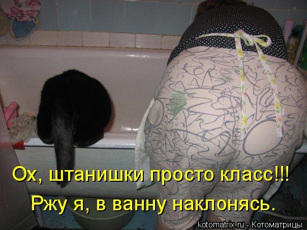 Котоматрица: Ох, штанишки просто класс!!! Ох, штанишки просто класс!!! Ржу я, в ванну наклонясь.