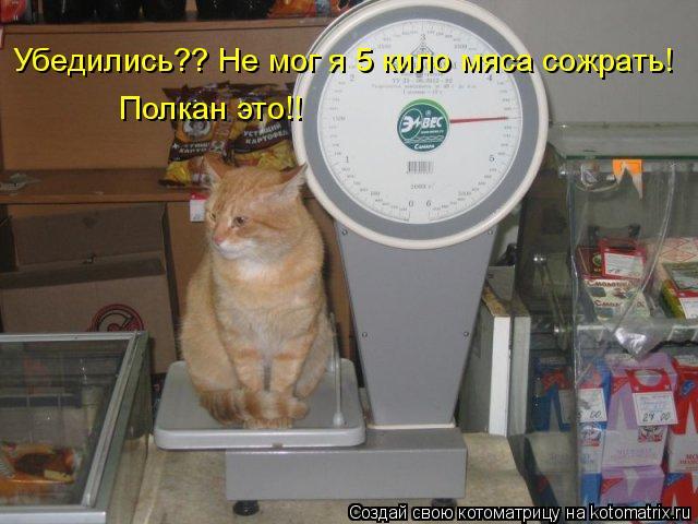 Котоматрица: Убедились?? Не мог я 5 кило мяса сожрать!  Полкан это!!