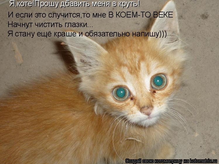 Котоматрица: Я,коте!Прошу дбавить меня в круть! И если это случится,то мне В КОЕМ-ТО ВЕКЕ Начнут чистить глазки... Я стану ещё краше и обязательно напишу)))