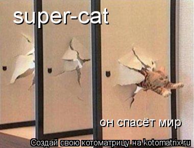 Котоматрица: super-cat  он спасёт мир