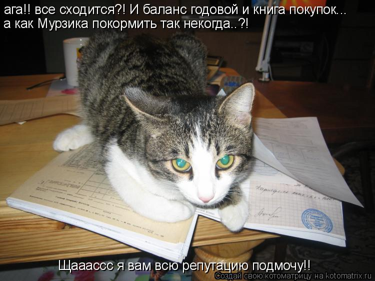 Котоматрица: ага!! все сходится?! И баланс годовой и книга покупок... а как Мурзика покормить так некогда..?! Щааассс я вам всю репутацию подмочу!!