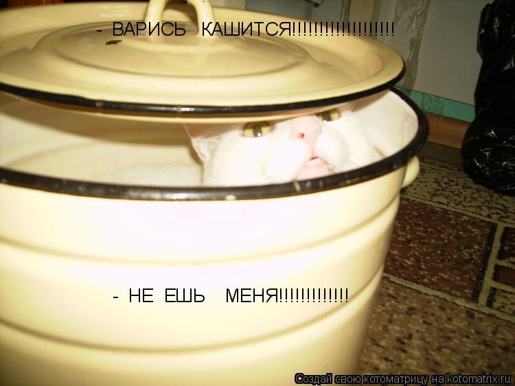 Котоматрица: -  ВАРИСЬ   КАШИТСЯ!!!!!!!!!!!!!!!!!!! -  НЕ  ЕШЬ    МЕНЯ!!!!!!!!!!!!!