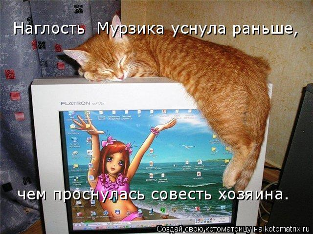 Котоматрица: Наглость  Мурзика уснула раньше, чем проснулась совесть хозяина.
