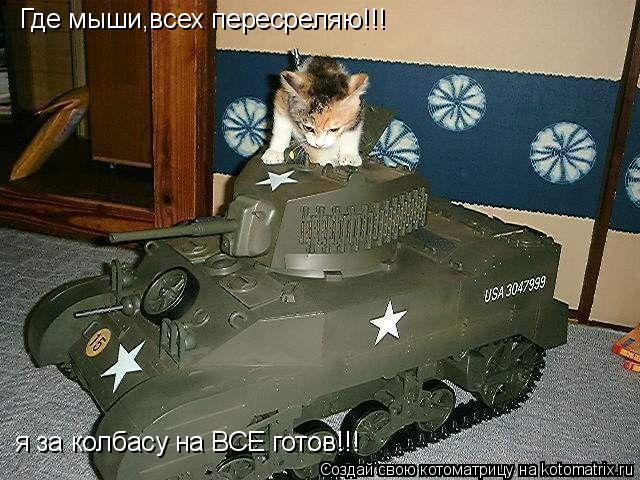 Котоматрица: Где мыши,всех пересреляю!!! я за колбасу на ВСЕ готов!!!