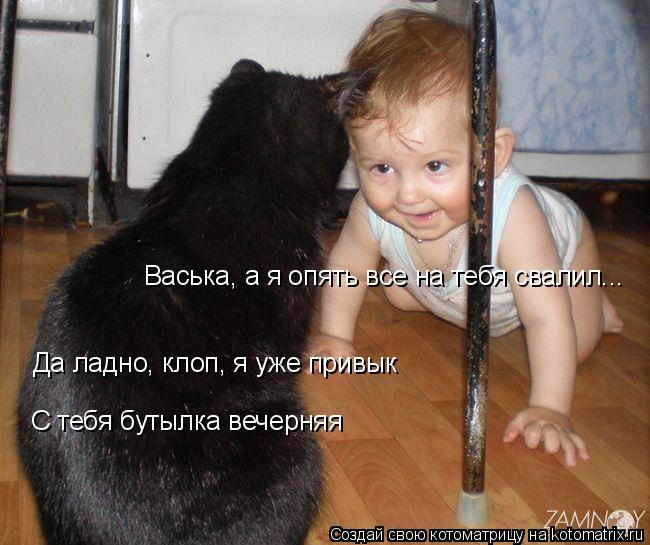 Котоматрица: Васька, а я опять все на тебя свалил... Да ладно, клоп, я уже привык С тебя бутылка вечерняя