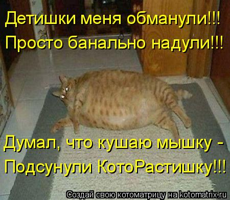 Котоматрица: Просто банально надули!!! Детишки меня обманули!!! Думал, что кушаю мышку -  Подсунули КотоРастишку!!!