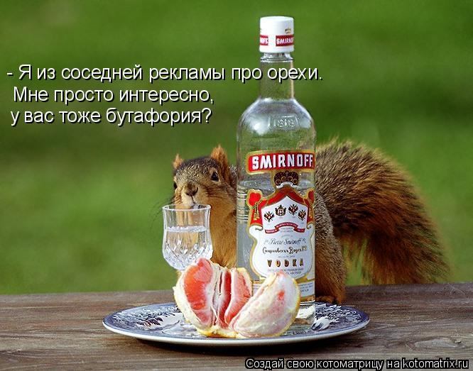 - Я из соседней рекламы про орехи. Мне просто интересно,  у вас тоже б
