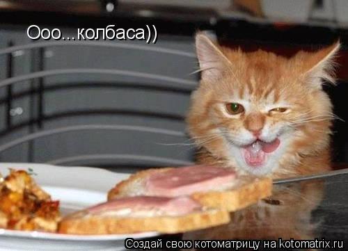 Котоматрица: Ооо...колбаса))