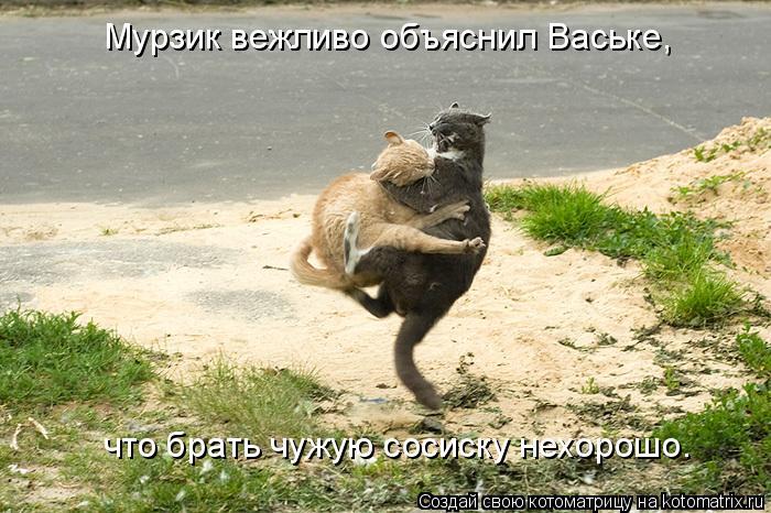 Котоматрица: Мурзик вежливо объяснил Ваське, что брать чужую сосиску нехорошо.