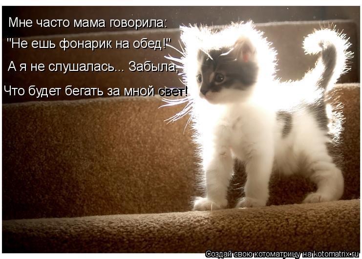 """Котоматрица: Мне часто мама говорила: """"Не ешь фонарик на обед!"""" А я не слушалась... Забыла, Что будет бегать за мной свет! свет!"""