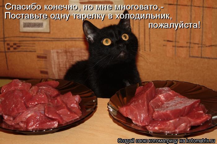 Котоматрица: Спасибо конечно, но мне многовато,- Поставьте одну тарелку в холодильник, пожалуйста!
