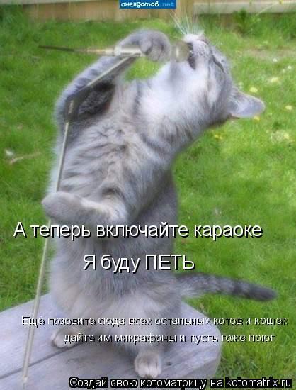 Котоматрица: А теперь включайте караоке  Я буду ПЕТЬ  дайте им микрафоны и пусть тоже поют Ещё позовите сюда всех остальных котов и кошек