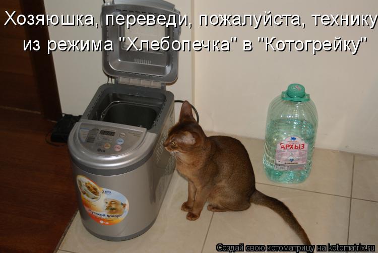 "Котоматрица: Хозяюшка, переведи, пожалуйста, технику  из режима ""Хлебопечка"" в ""Котогрейку"""