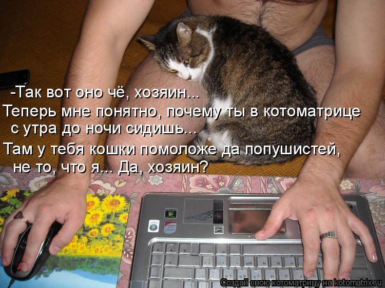 Котоматрица: -Так вот оно чё, хозяин... Теперь мне понятно, почему ты в котоматрице с утра до ночи сидишь... не то, что я... Да, хозяин?  Там у тебя кошки помолож