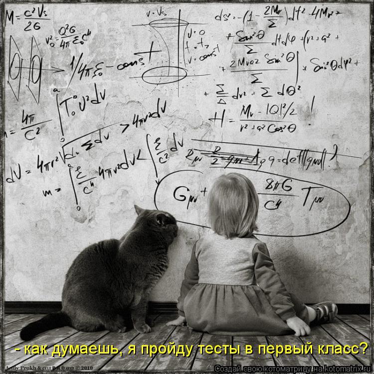 Котоматрица: - как думаешь, я пройду тесты в первый класс?